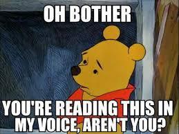 Pooh Meme - the pooh says