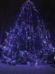 long branch tree lighting west long branch recreation commission home facebook