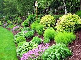 Garden Shrubs Ideas Shrub Garden Design Small Garden Border In Designed And Planted By