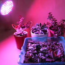 popular indoor grow lamps buy cheap indoor grow lamps lots from