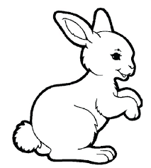 articles peter rabbit coloring book pages tag peter rabbit