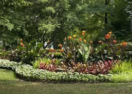florida backyard ideas florida tropical landscaping ideas best landscaping outdoor ideas