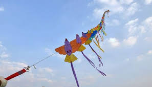 Seeking Balloon Gujarat Hc Issues Notice To Govt On Pil Seeking Ban On Kite Flying