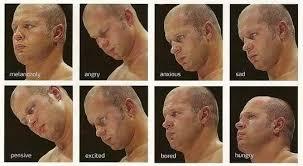 Fedor Emelianenko Meme - mixed martial arts useful notes tv tropes