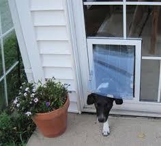 installing pet door in glass door maxseal in glass pet door from security boss manufacturing
