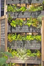 Urban Herb Garden Ideas - 65 best vertical gardening images on pinterest gardening