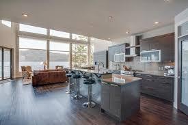 salon sejour cuisine ouverte décoration salon cuisine ouverte m 77 montpellier 06400809