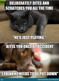 Dog Cat Meme - cats and dogs by khama meme center