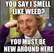 Funny Pot Memes - th id oip 7qdqqzu8wefjuzsfsf9ucahaho
