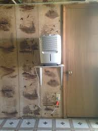 Dehumidifier Basement How To Remove Mold U0026 Mildew From Your Basement Part 1 U2014 Stevie