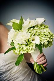 hydrangea bouquet best 25 green hydrangea wedding ideas on green