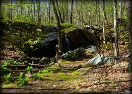 Rhode Island waterfalls images Cascade brook trails walks in rhode island jpg