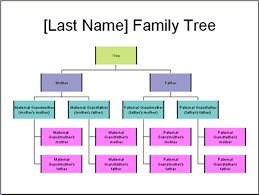 use powerpoint to create your own family tree chart