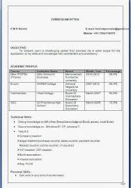 Resume Format For Mba Finance Freshers Pdf Professional Resume Excellent Sample Of M Amp Mba Marketing Inside