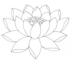 lotus drawing for kids lotus flower coloring pages printable