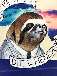 Sloth Meme Shirt - live slow die whenever sloth rare 3d t shirt