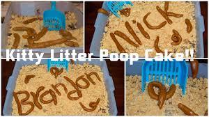 kitty litter cake youtube