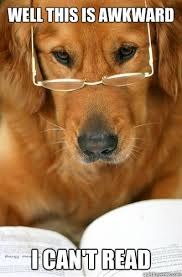 Golden Retriever Meme - well this is awkward i can t read sophisticated golden retriever