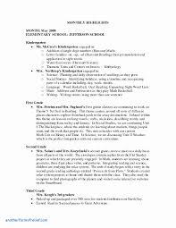 grade book report template 11 new how to write a book report 3rd grade davidhowald