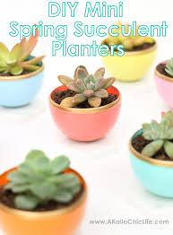 How To Make A Succulent Planter by A Kailo Chic Life Craft It Diy Mini Spring Succulent Planters