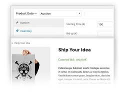 Vestibulum Sapin Prin Quam by Auctions Plugin For Wordpress And Woocommerce Websites