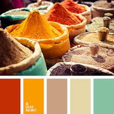 orange spice color цветовая палитра 1780 combination colors color pallets and color