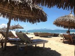 an bang beach dolphin homestay hoi an vietnam booking com