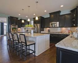 Gold Kitchen Cabinets Class Black Cabinets In Kitchen