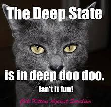 Cute Kittens Meme - cute kittens against socialism home facebook