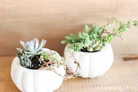 succulent planters how to make fall succulent planters maison de pax