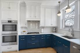 Best Type Of Paint For Kitchen Cabinets by Kitchen New Cabinet Doors Easiest Way To Paint Cabinets Type Of
