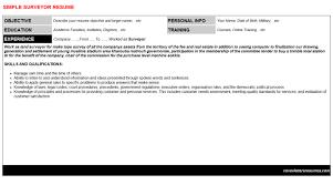 survey programmer confirmit resumes u0026 cover letters