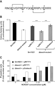 plos biology protection of sinorhizobium against host cysteine