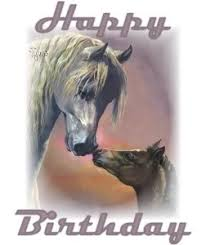 Horse Birthday Meme - happy birthday paarden google zoeken verjaardags afbeeldingen