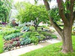Front Lawn Landscaping Designs by Front Yard Landscaping Ideas Shade The Garden Inspirations