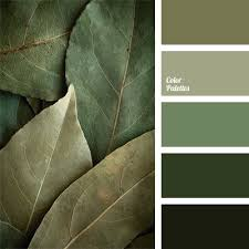 best 25 shades of green ideas on pinterest green shades colors
