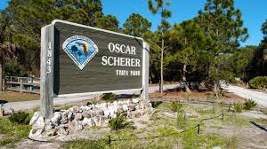 oscar scherer state park hiking florida style trailing the lawsons