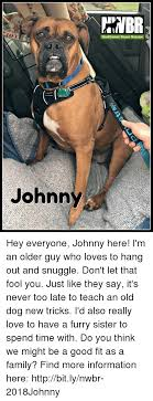 Old Boxer Meme - tnbr northwest boxer rescue johnny hey everyone johnny here i m