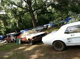 mustang salvage yard just found the largest ford mustang salvage yard
