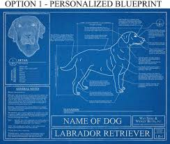 personalized labrador retriever blueprint labrador retriever