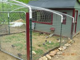 backyard chicken coop amhtxy com