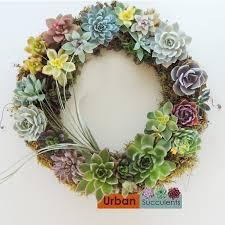succulent wreath succulent wreath succulents