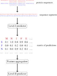multi level machine learning prediction of protein u2013protein
