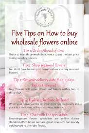 Bulk Flowers Online Ordering Wholesale Flowers Online Best 25 Wholesale Flowers Online