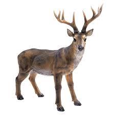 Whitetail Deer Home Decor Amazon Com Design Toscano Big Rack Buck Deer Statue Patio