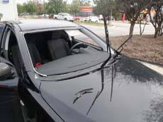 honda accord front windshield replacement compare miami windshield replacement auto glass prices