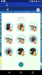 pidgeot car biomes have been broken in several islands of the atlantic for