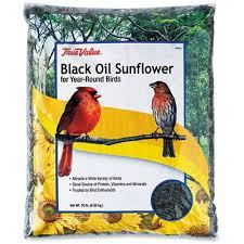 black oil sunflower bird seed 20 lbs k u0026k hardware