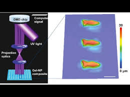 Home Design 3d Magnetism Microscopic 3d Printed Microfish Are Controlled By Magnetism
