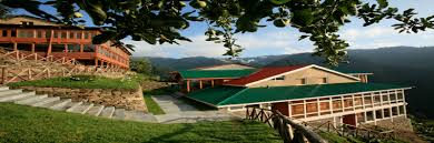 sojha resorts place to stay wooded villas himanchal pradesh